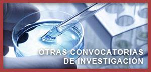 XI Convocatoria de Proyectos de Investigación 2019-2021