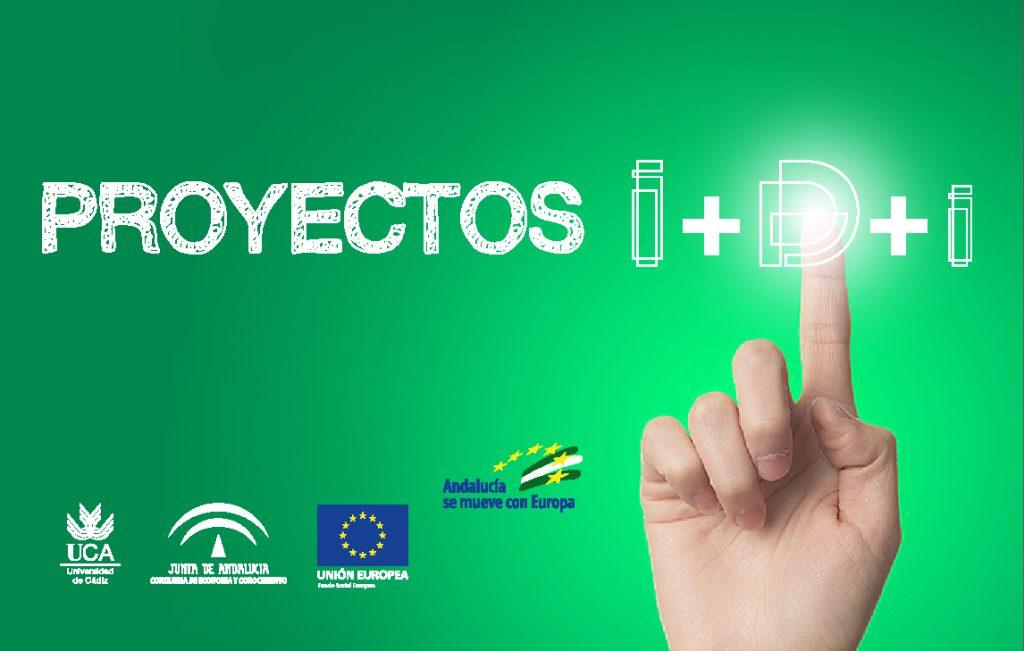 Proyectos de I+D+i de la Junta de Andalucía